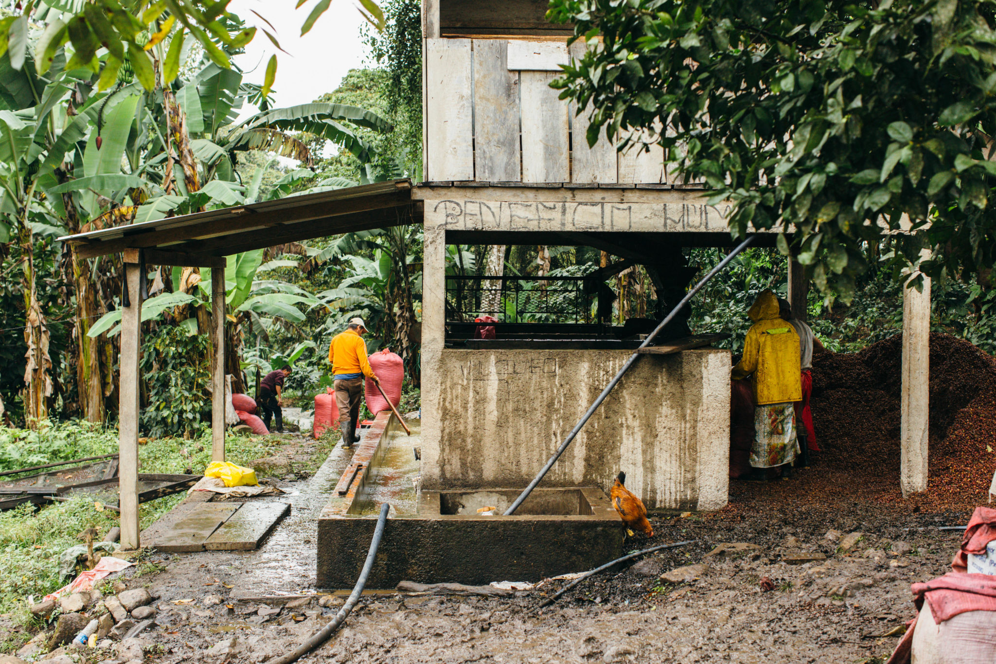 Clean Water in Nicaragua | Where We Work | Water For People